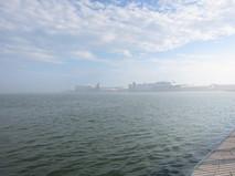 霧の北埠頭